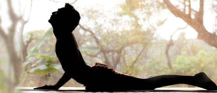 ashtanga yoga centre in goa, yoga retreat goa, yoga retreats in goa, yoga retreats in north goa,, yoga asana in goa, yoga meditation in goa, yoga in goa